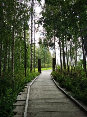 Hiekanpään rantapuiston esteettömät pitkospuut , Pieksämäki